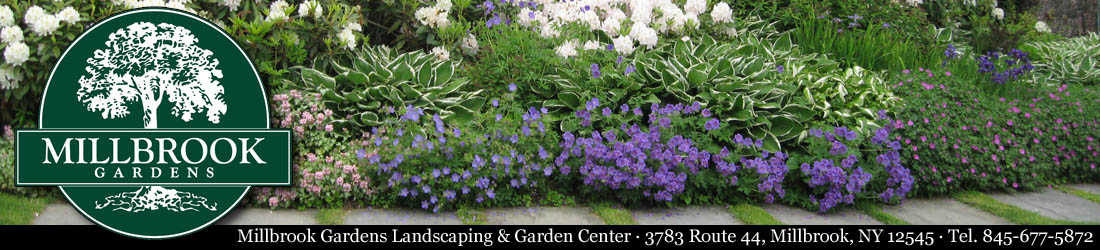 Millbrook Gardens Landscaping & Garden Center Logo