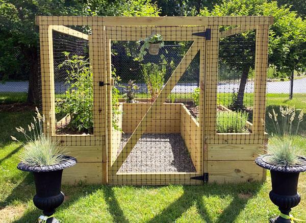 Raised Bed Garden - June 2020