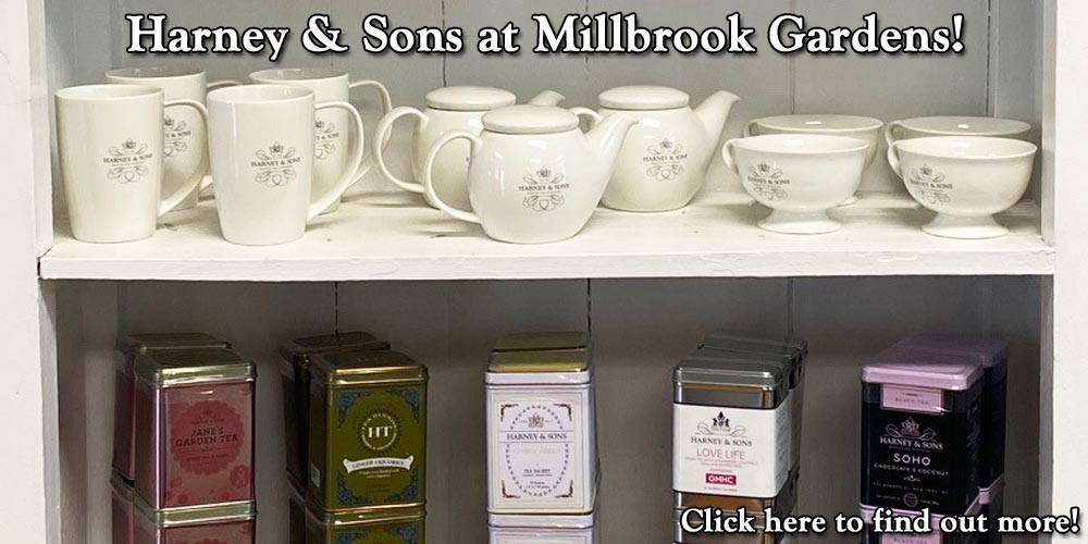 Harney & Sons at Millbrook Gardens!