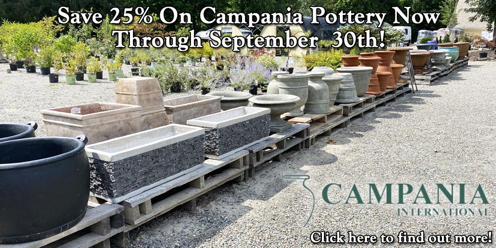 Save 25% on Campania Pottery Through September 30th!
