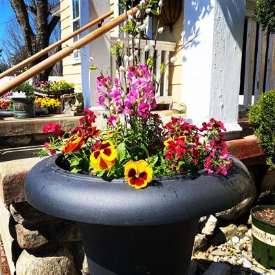 Outdoors at the Garden Center