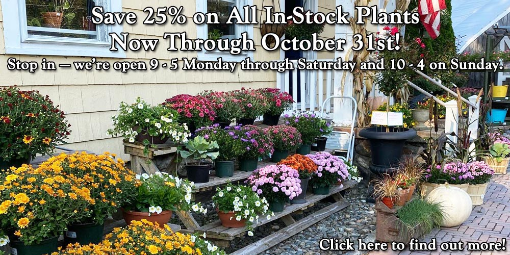 Save 25% on All In-Stock Plants Now Through October 31st!